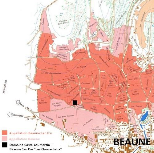 Carte des parcelles de Beaune