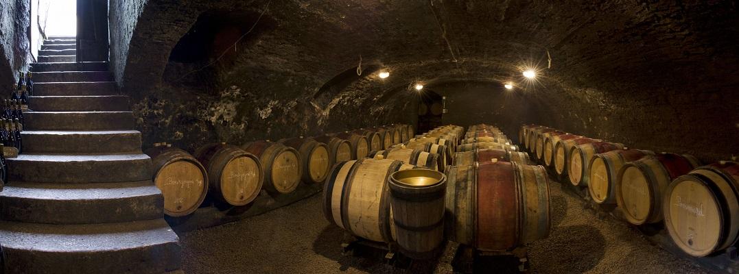 Cave à fûts