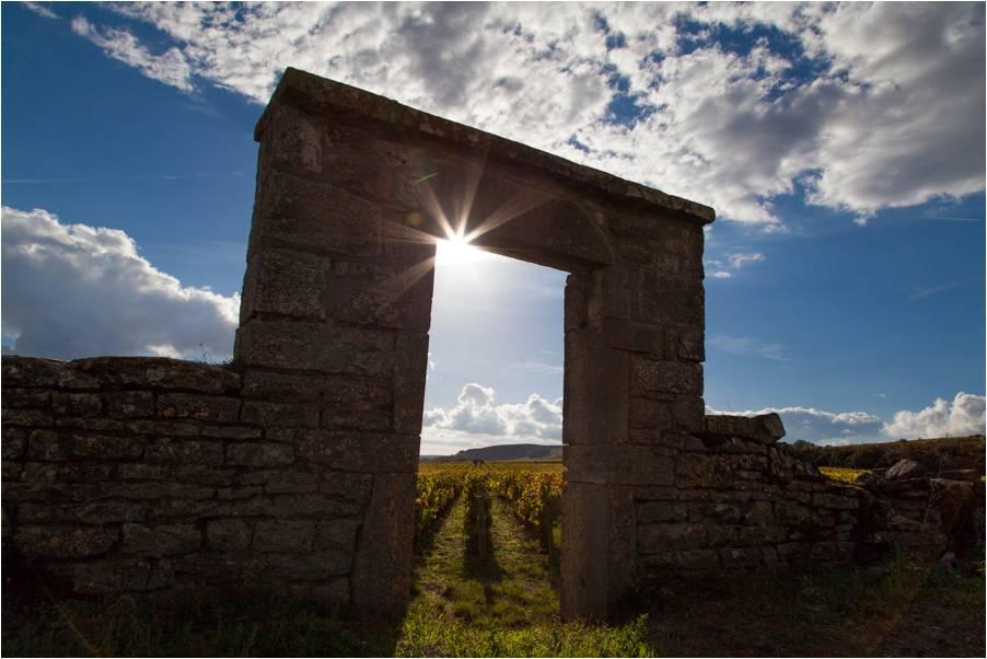 Porte du Clos des Boucherottes Pommard 1er Cru