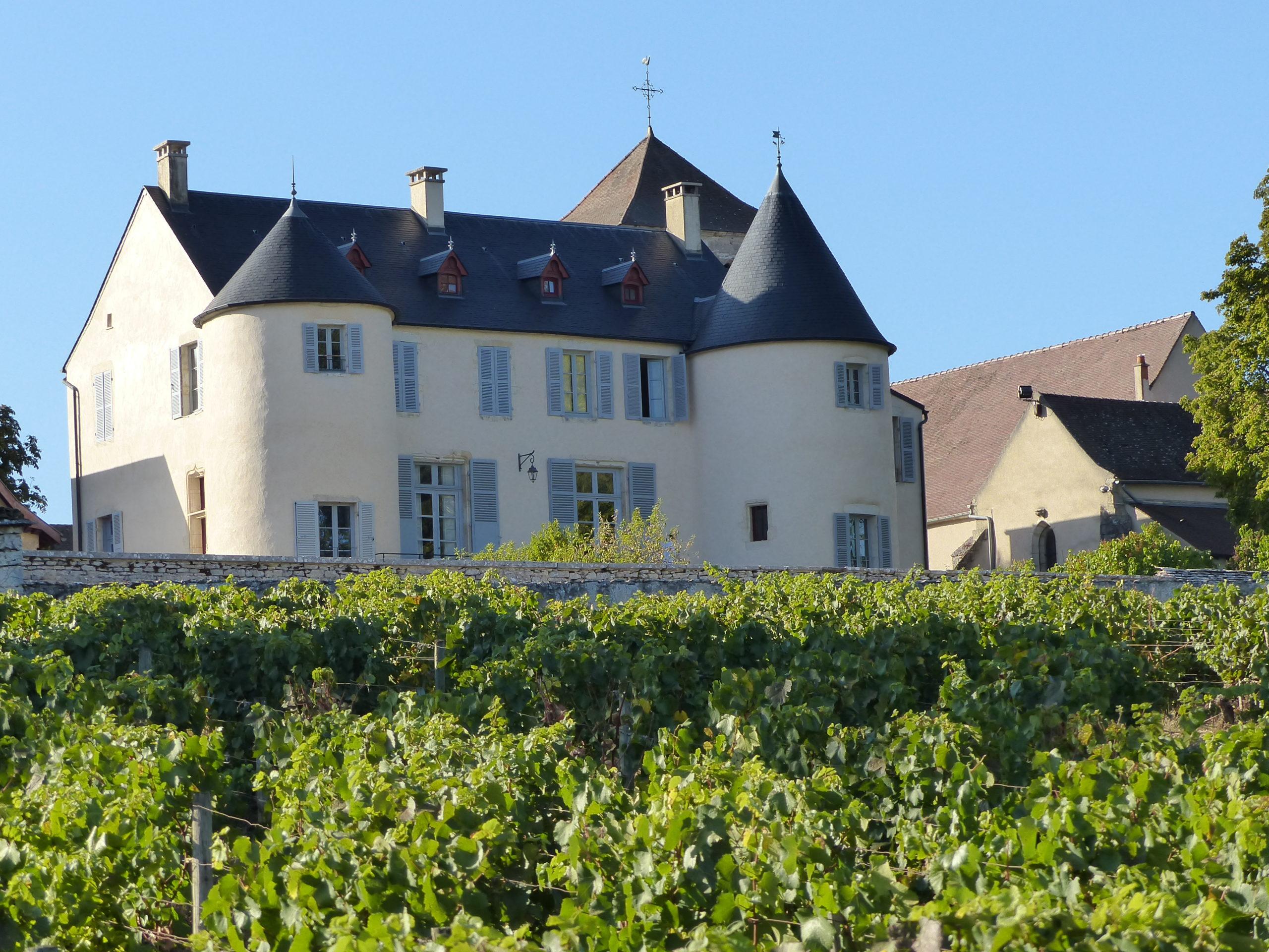 Château de Saint-Romain lieux dit Sous le chateau Vignes