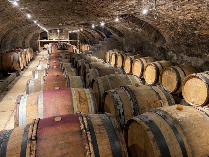 Belle cave bourguignonne avec futs de vin